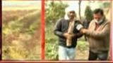 ये किसान नहीं MSP और मंडी के भरोसे, खेती से कमाया 4 गुना तक फायदा